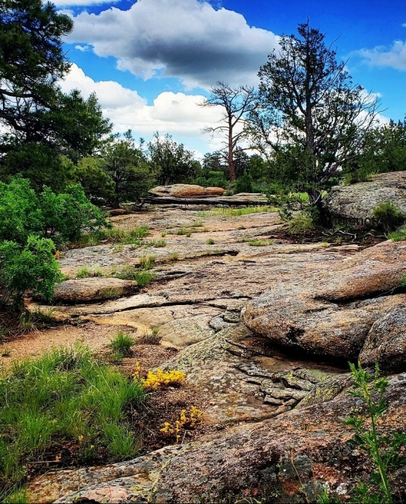 photo of a hiking trail with clouds in the background, rocks and shrubs in the foreground
