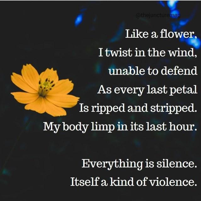 poem ---- flower (3)