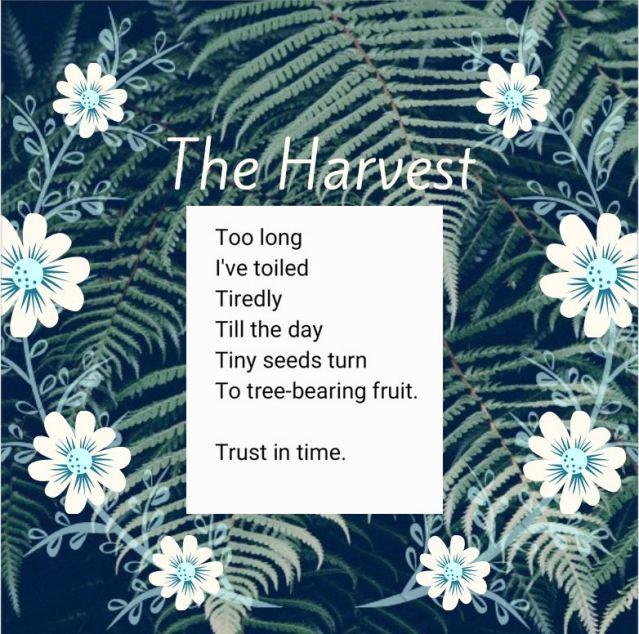 Poem ---- The Harvest.jpg